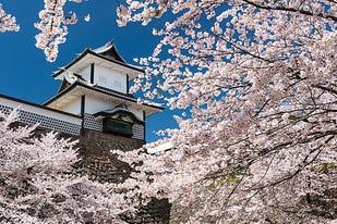 【2019年版】金沢の桜名所10選。おすすめの厳選お花見スポット!