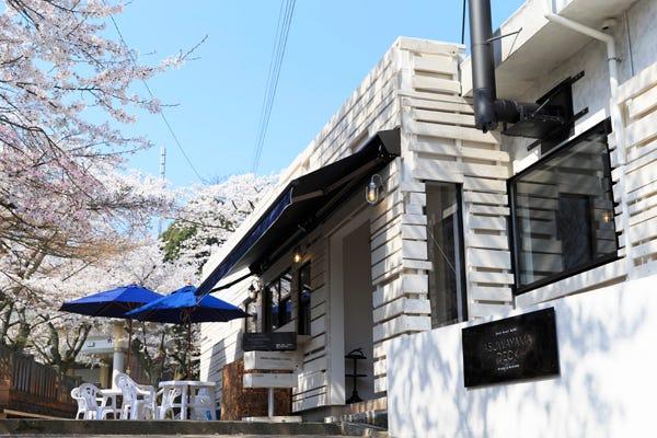 福井・足羽山の桜を見下ろせる「ASUWAYAMA DECK」でピクニック!│観光 ...