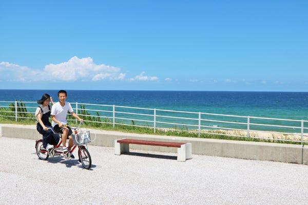 海浜 中 海 の 公園 道
