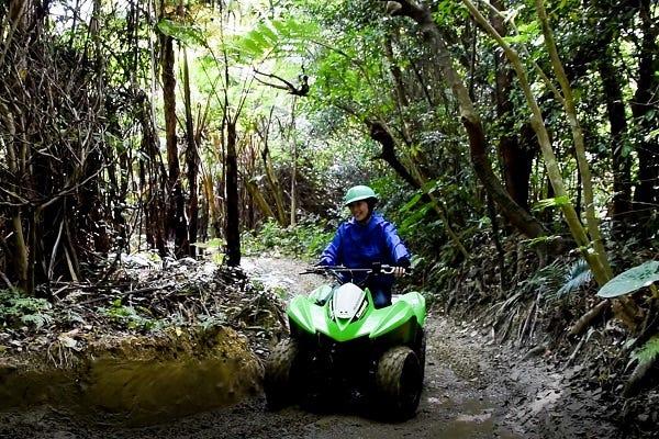 沖縄やんばるの大自然をバギーでGO!超アウトドア体験│観光・旅行ガイド - ぐるたび