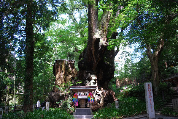 来 の 宮 神社