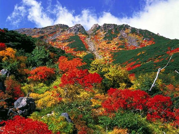 雲海に紅葉、絶景の木曽御嶽山へ!ロープウェイで大パノラマを体感 ...