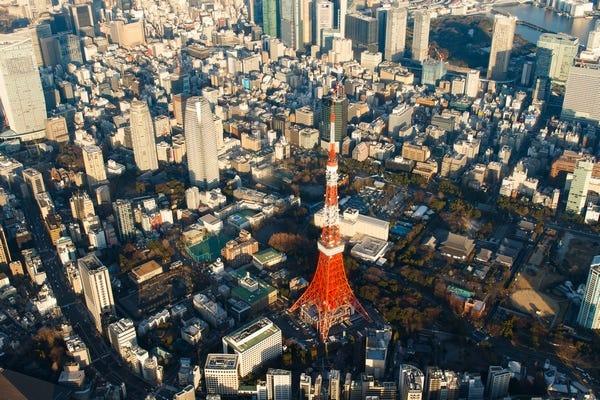 見 東京 都会 都会で見られる野鳥の画像!春夏秋冬8種類!