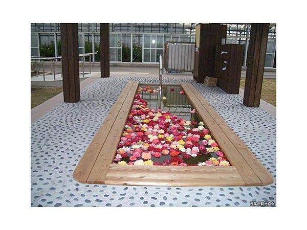 農園 西尾 市 憩い の 憩の農園で西尾市産切花を贈り、花きの需要を喚起|JA西三河
