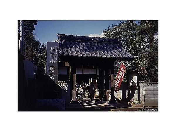 慈雲寺 (横浜市)