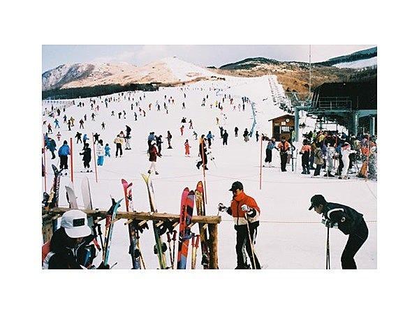 森林 スキー くじゅう 場 公園 くじゅう森林公園スキー場の口コミ・評判・感想・混雑|スキー・スノボ研究所