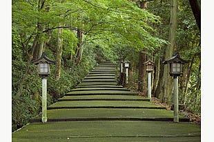 【石川】現地ガイドが案内!白山比め神社おついたちまいりツアー(現地ガイド・昼食付)