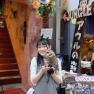 浅草のフクロウカフェはふくろう好き必見! 近距離で触れ合えるおすすめの非日常体験