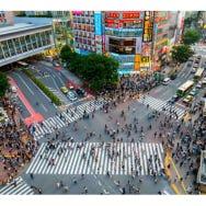 [MOVIE] Tokyo Shibuya|Shibuya Station Area Map & Sightseeing Information
