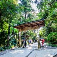 高尾山の観光おすすめスポット10選+α! グルメに絶景、宿泊に、楽しい場所が満載