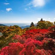 도쿄 근교 온천을 찾고 있다면? 도쿄에서 당일치기도 가능한 오야마의 단풍과 쓰루마키 온천 추천 코스