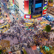 Shibuya Tour: Explore All of Shibuya With This Free Walking Tour!