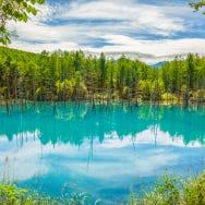 Top 5 Things to Do in Hokkaido's Biei and Furano Area: Blue Pond (Aoiike) And More!