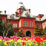 5 Must-Visit Spots in Sapporo: Breathtaking Hokkaido Views & More!