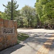 최근 주목받는 지역 [삿포로 마루야마 지구] 마루야마 공원와 홋카이도 신사로 가자!