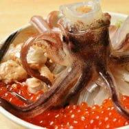 函館の名物「イカ料理」を味わえる人気店5選!イカ刺しに活イカ踊りも