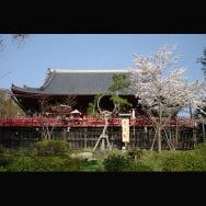 【도쿄와 그 주변x사원】일본을 방문한 외국인들의 인기시설 랭킹 2019년 8월 편