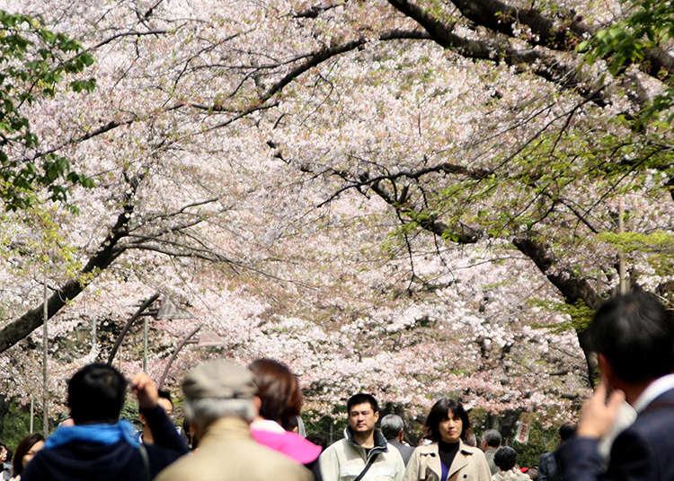 2: Ueno Park