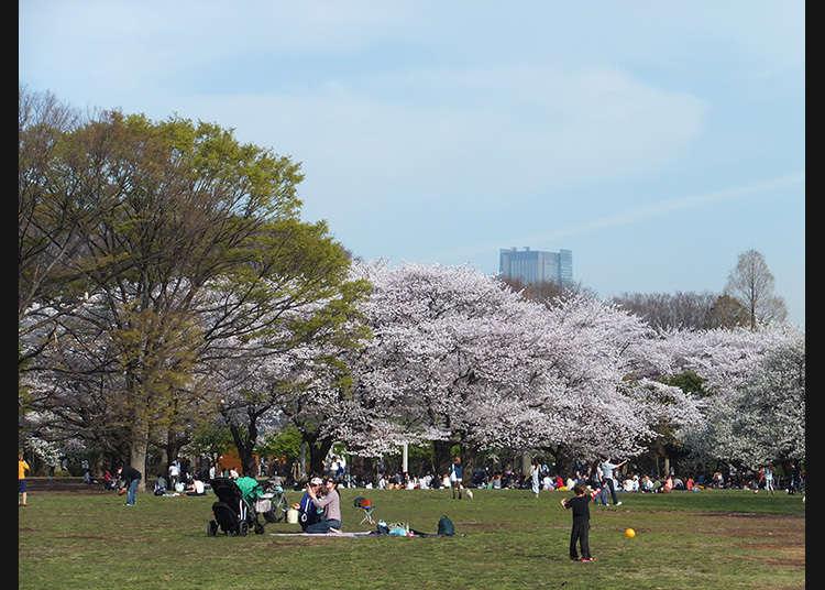 """7: """"Yoyogi Park"""" (Taman Yoyogi)"""