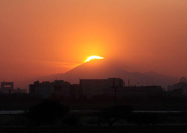「ダイヤモンド富士」を拝めるかも!「葛西臨海公園」