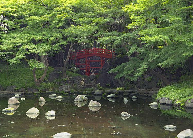 5.小石川后乐园