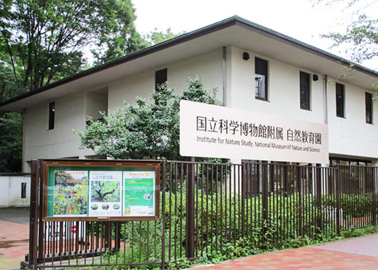 「國立科學博物館附屬自然教育園」