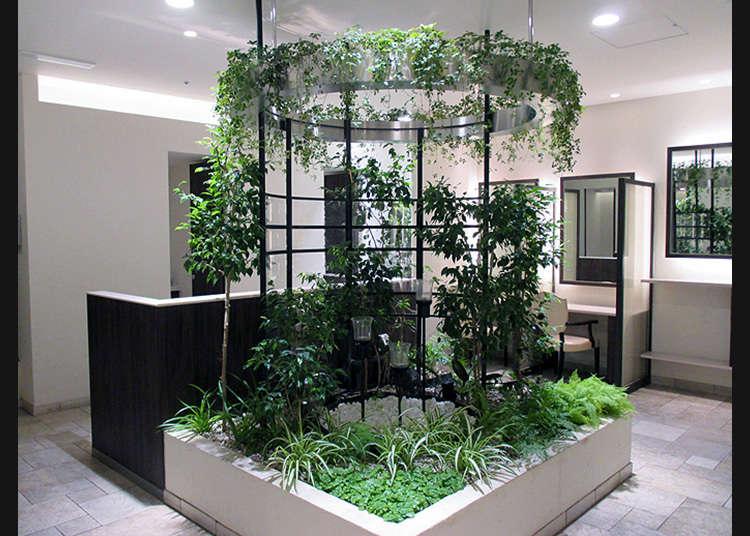 【新宿】水と緑あふれる癒しの空間