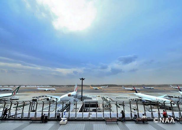 Cara Menghabiskan Waktu di Bandara Internasional Narita dengan Memuaskan!
