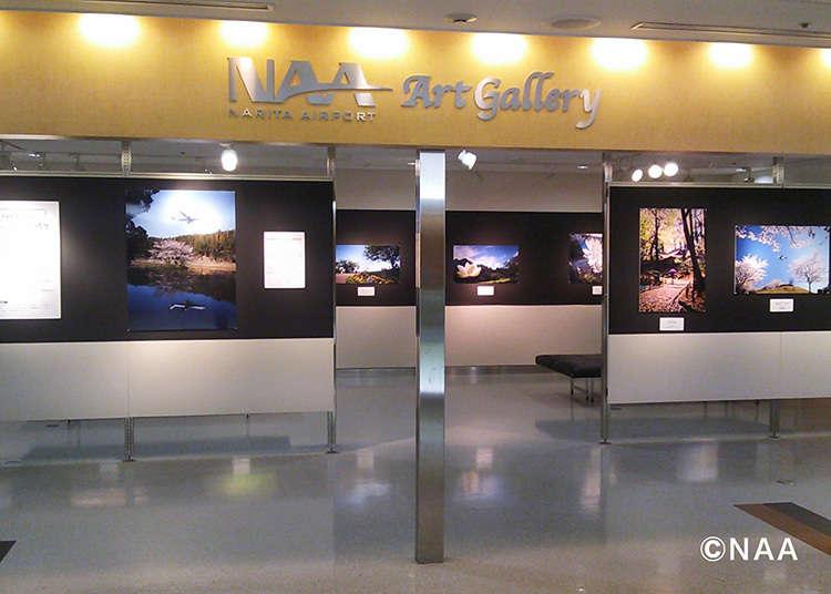 Apresiasi Seni di NAA Art Gallery