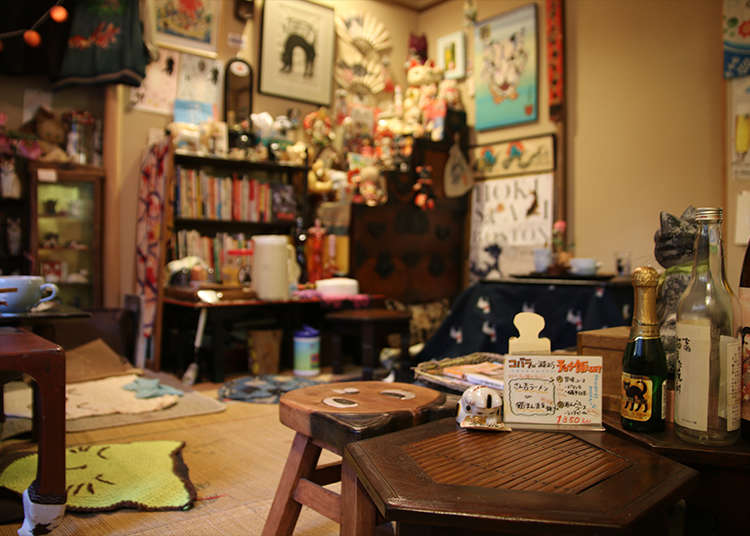 10. Unwind and Experience Japanese Daily Life (and Cats!) at an Old Japanese Folk House Cafe in Yanaka