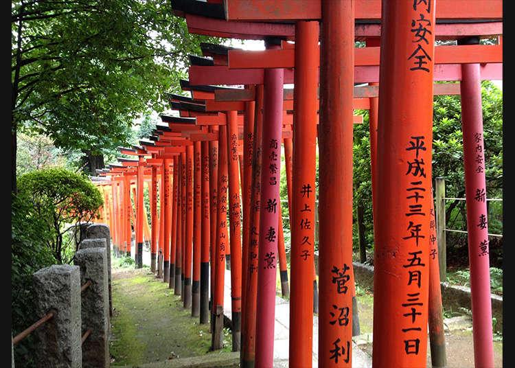 神秘的な雰囲気が漂う「根津神社」の乙女稲荷の鳥居