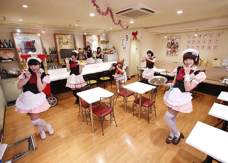 일본 메이드 카페중 인기있는 가게 3곳을 소개해 본다!