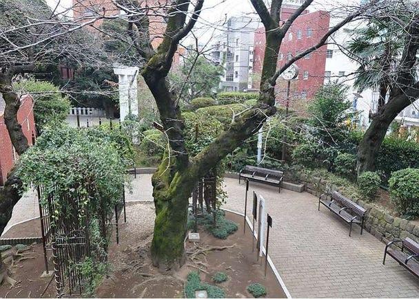 六本木で日本情緒を感じられる場所