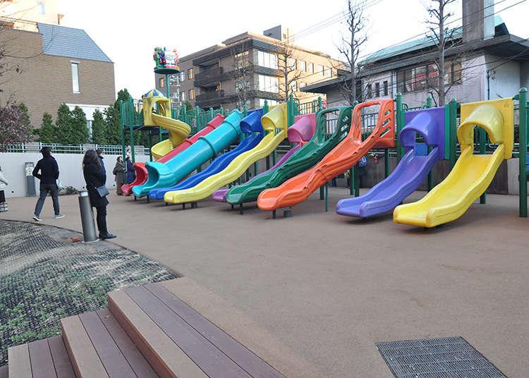 去roborobo公园逛一逛