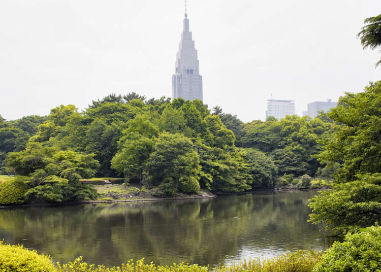 Shinjuku Points of Interest: Feel the Greenery!