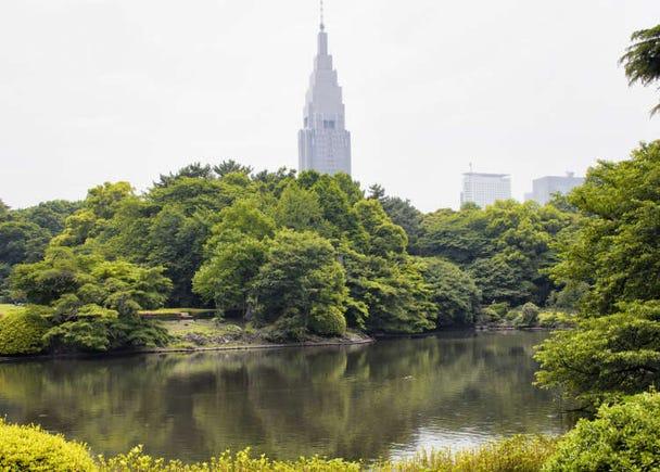 Shinjuku Points of Interest: Feel the Greenery!