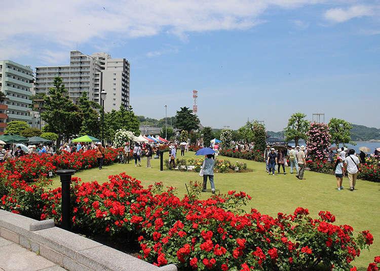 1. Verny Park: A French garden facing the Port of Yokosuka