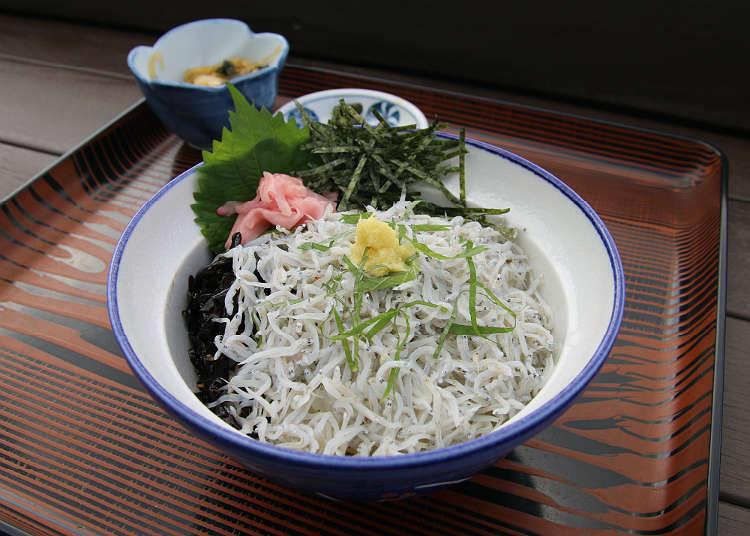 Enjoy Shirasu, the Local Specialty of Enoshima
