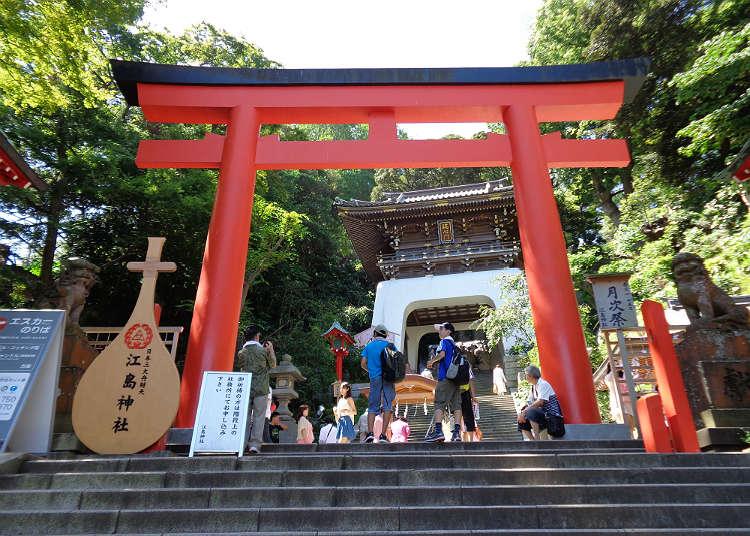 沿著參拜道路行走到「江島神社」參拜