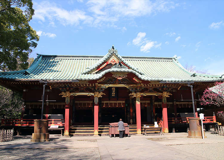Visit the historic, solemn shrine, Nezu Shrine