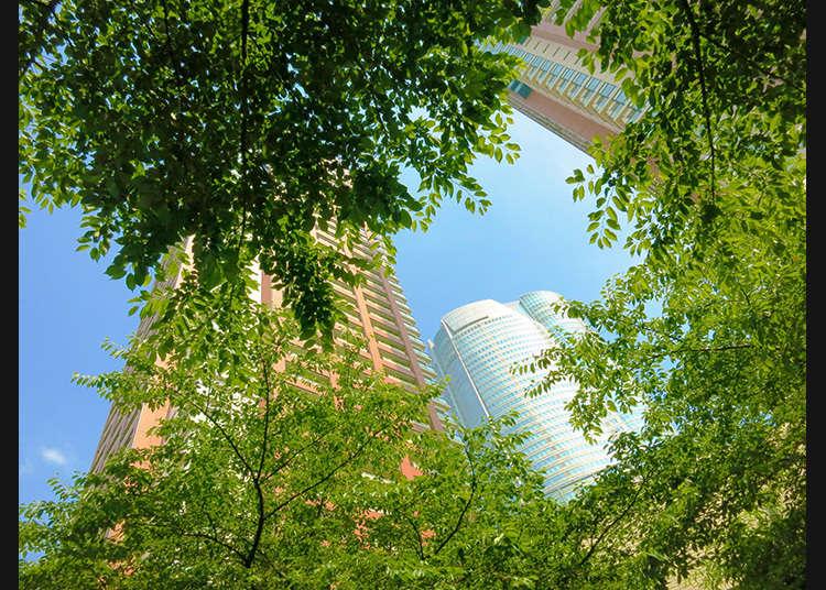 接觸綠意與公共藝術的時刻