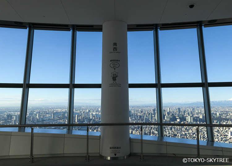 從展望台可以眺望至哪裡?