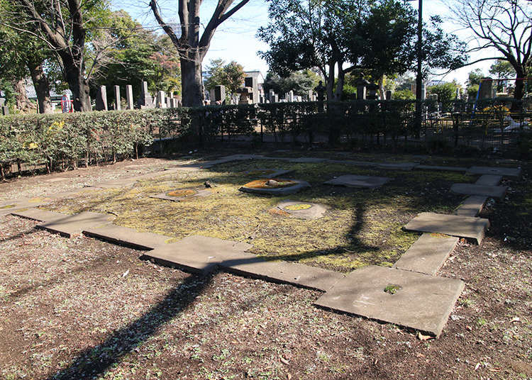 1. Yanaka Cemetery: Remains of five-storied pagoda in its vast site