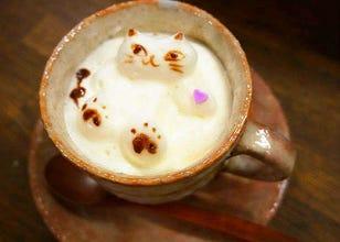 发现了令人兴奋不已的猫咪3D拿铁艺术咖啡馆!