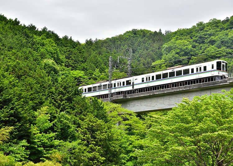 Tiket perjalanan 1 hari oleh Seibu Railway