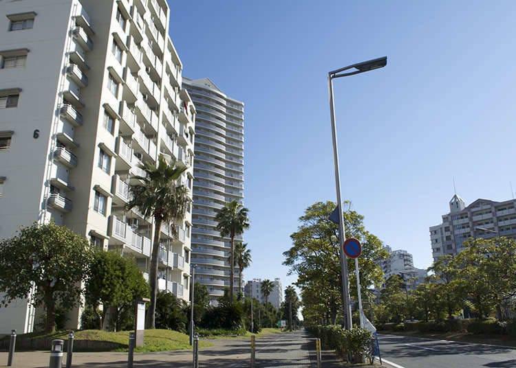 เมืองอุรายาสุ (Urayasu-Shi)