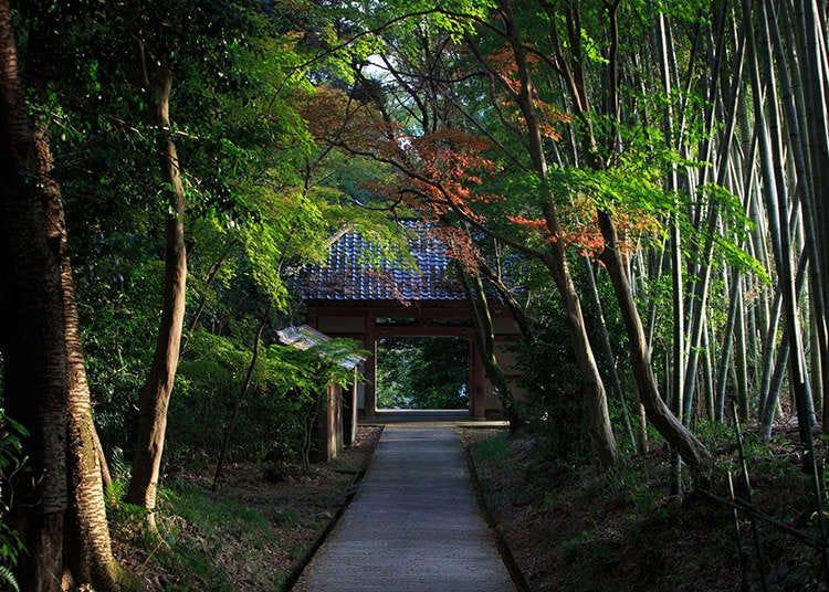 Sejarah dan Sifat Shinto