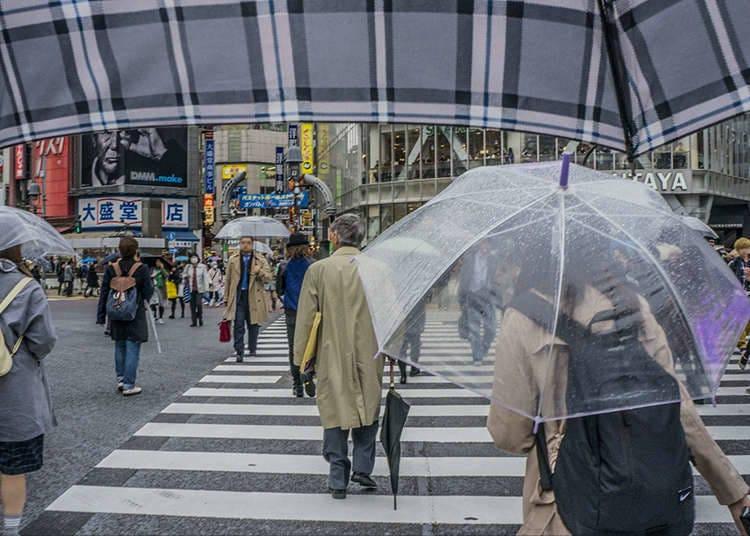 日本的梅雨季節