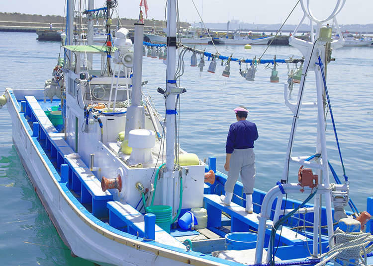 Tsukiji, tanah yang dilindungi oleh nelayan