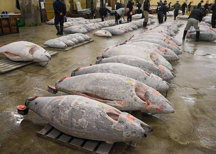 Berkunjung di Pasar Nomor Satu Di dunia, Area Tsukiji